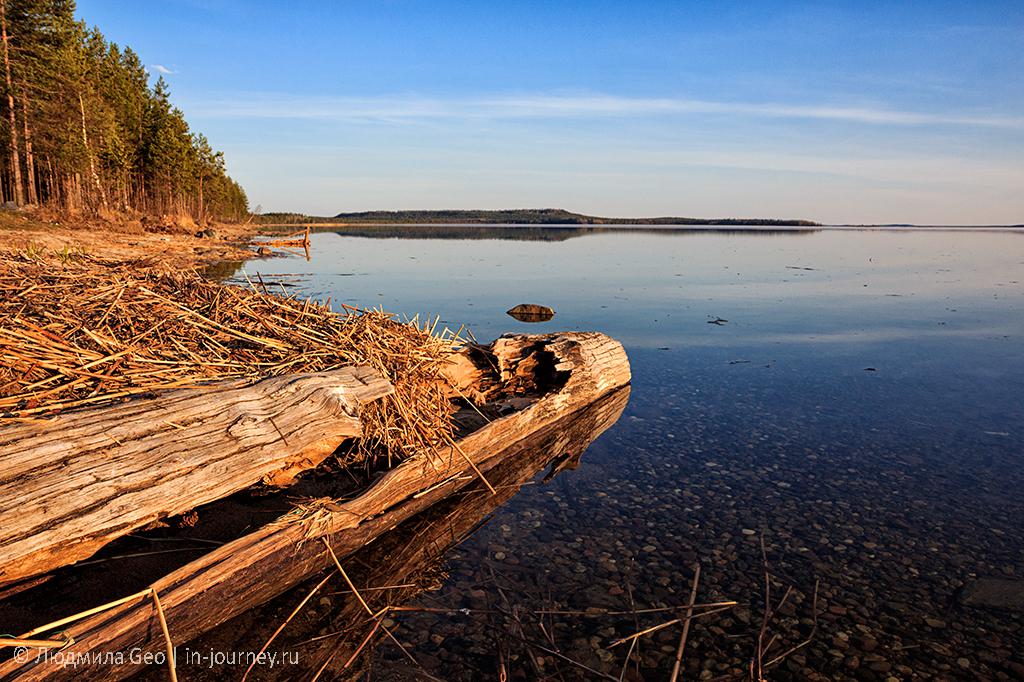 берег Онежского озера в закатных лучах