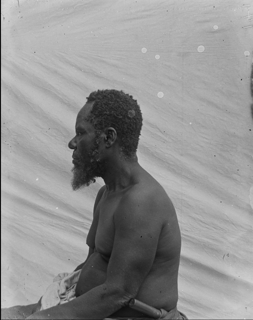 15. Антропометрическое изображение мужчины макуа