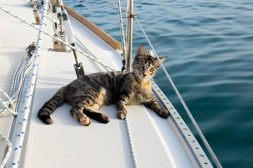 «Он сказал, что мы можем либо купить дом, либо сэкономить деньги и купить яхту».