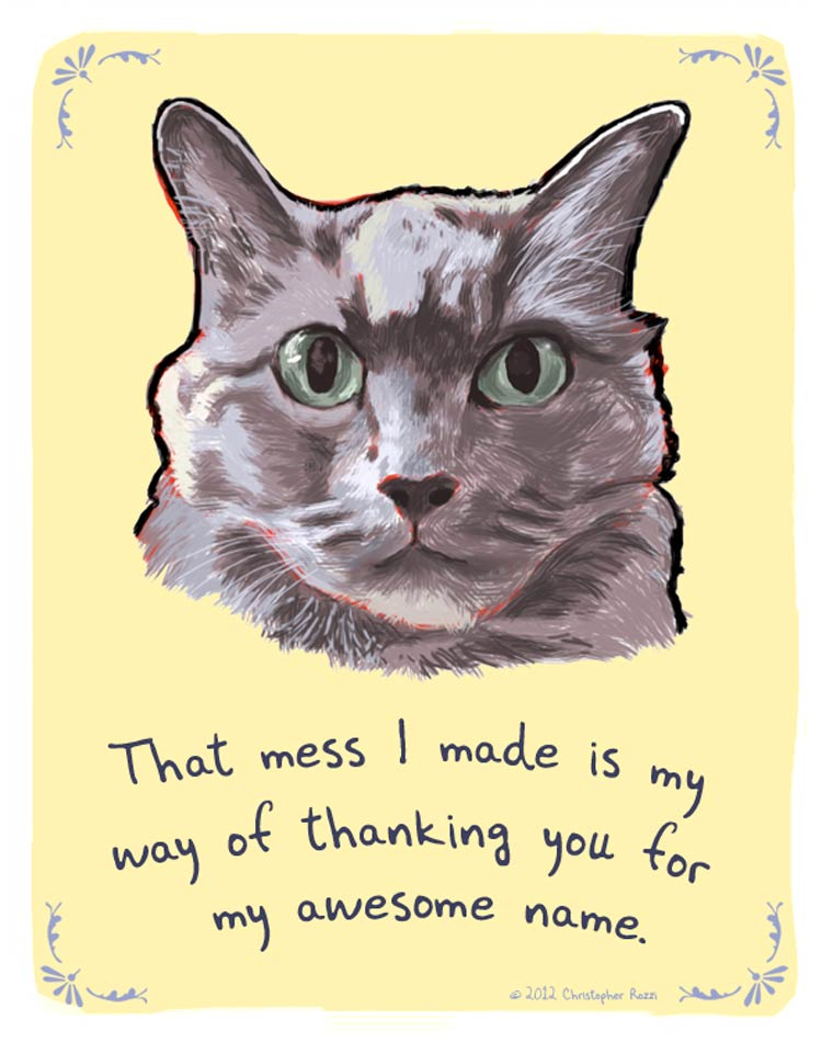 Tiny Confessions - The hilarious illustrated confessions of our dogs and cats