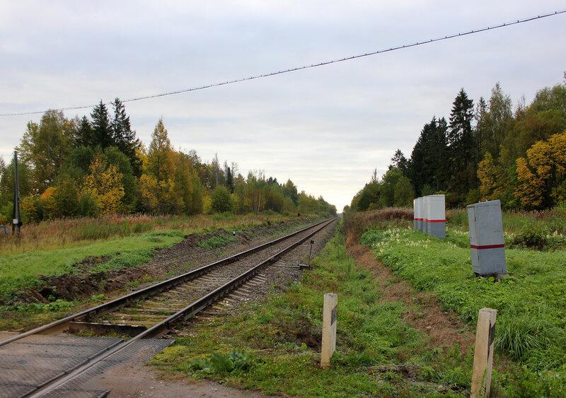 Переезд на перегоне МЮД - Кашин, вид на Савёлово. 210 км 8 пк