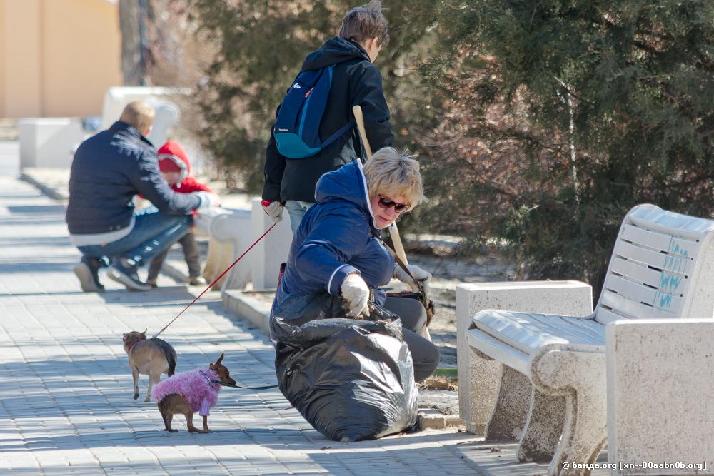 Акция Убери за собакой