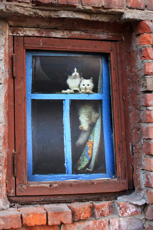Фото Ульяны Бабиной