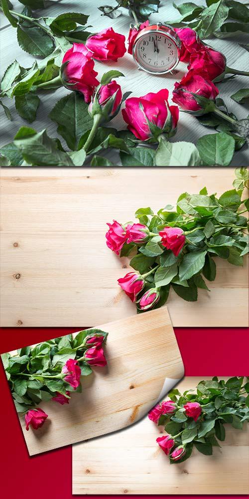 Прекрасные розы для поздравлений - Клипарт / Beautiful roses for congratulations - Clipart