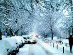 На утро после снегопада