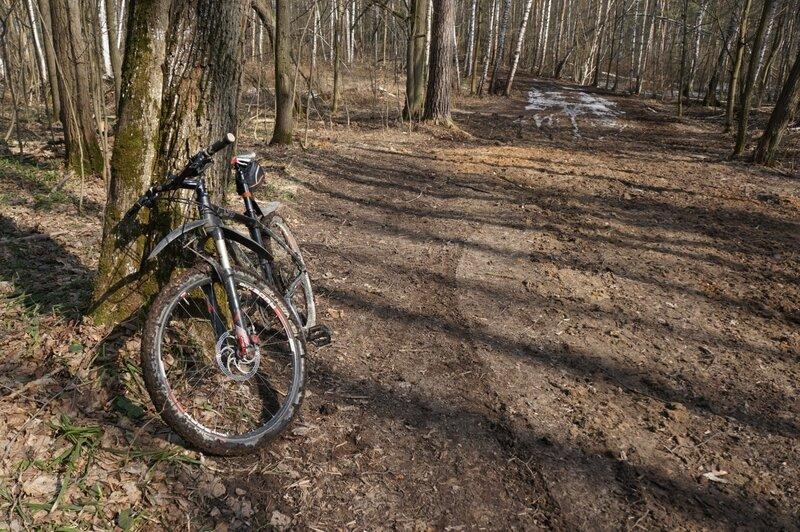 Лес, дорога, велосипед