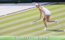 http://img-fotki.yandex.ru/get/9795/14186792.27/0_d8fda_c127174c_orig.jpg