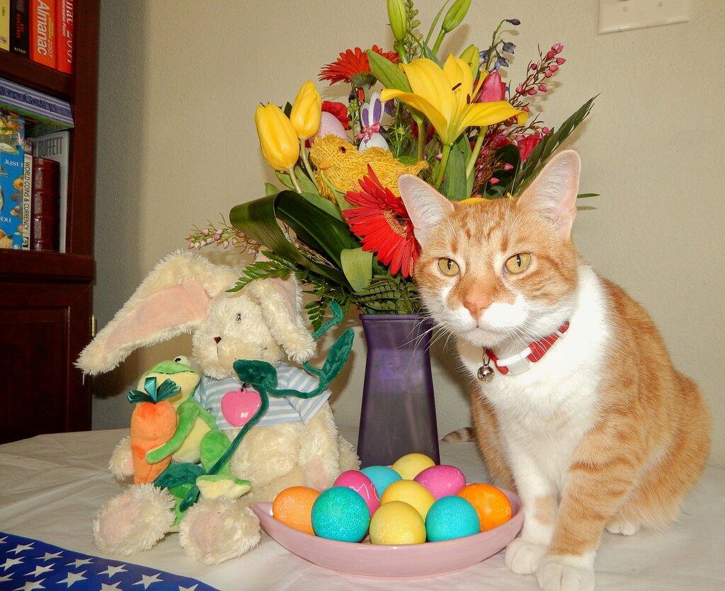 Easter-2014.
