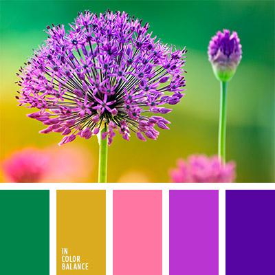Сочетание цветов фиолетовый и зеленый