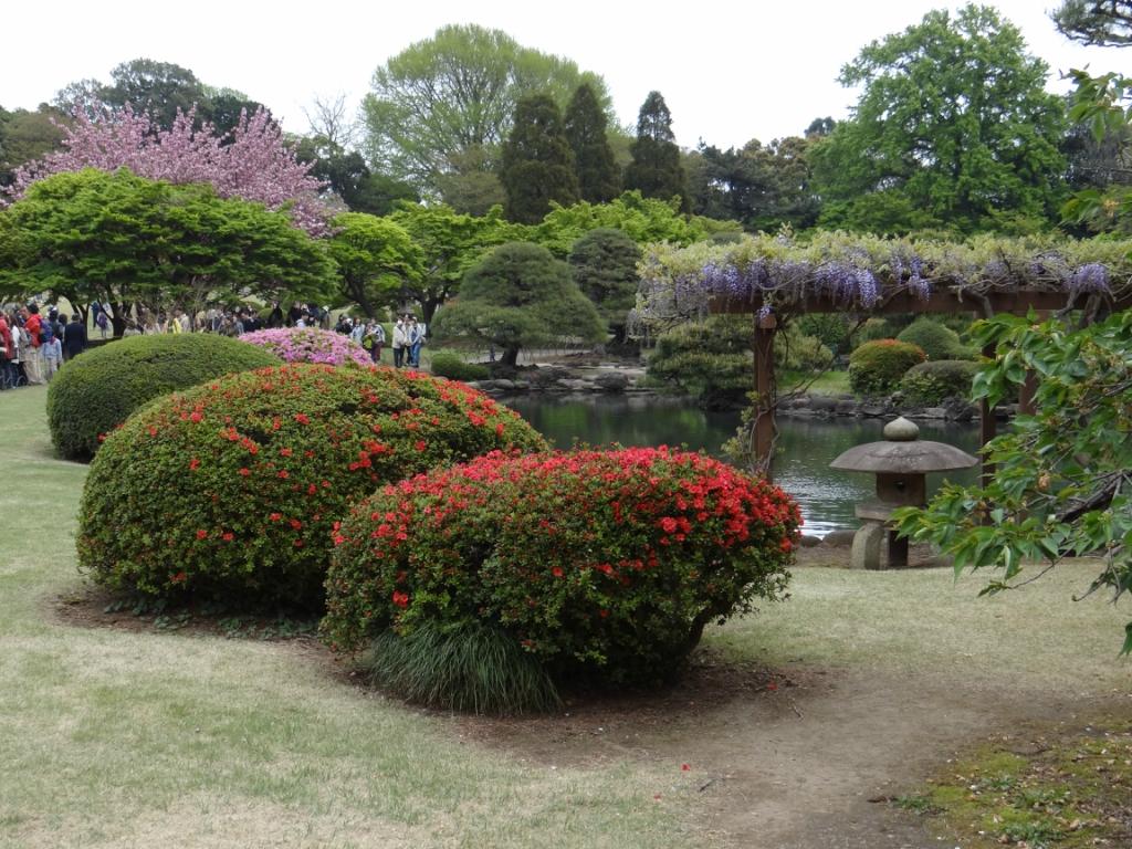 Императорский сад Синдзюку-Гёэн.Япония