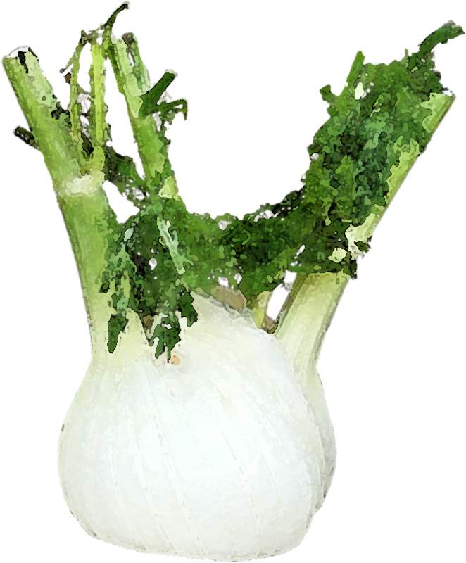 catherinedesigns_LittleGarden_Fennel copy.png