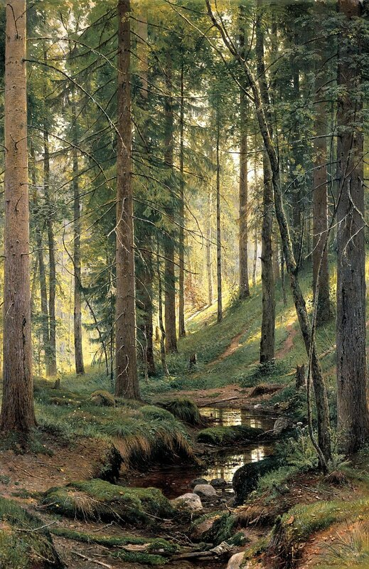 Иван Иванович Шишкин, Ручей в лесу (На косогоре), 1880 г.