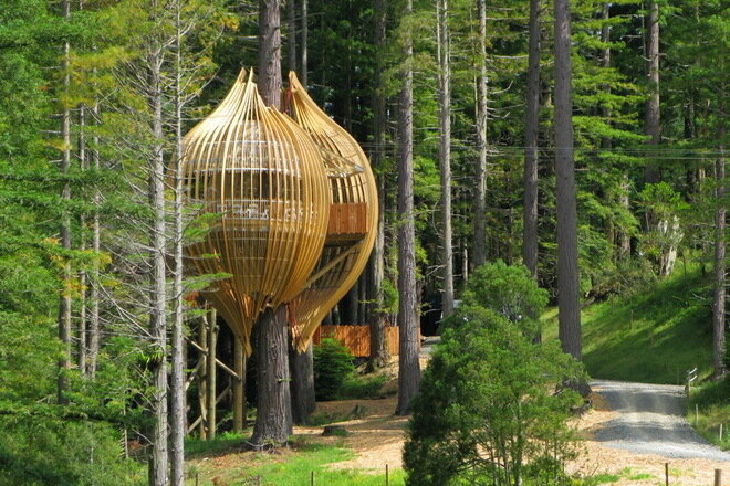 Yellow Treehouse. Новая Зеландия
