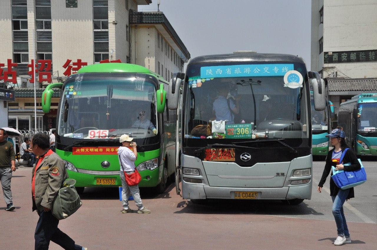 Автобусы № 915 и 306 до Терракотовой армии