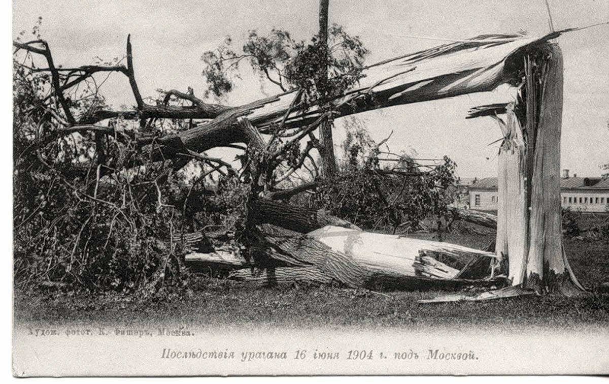 Последствия урагана 16 июня 1904 г.