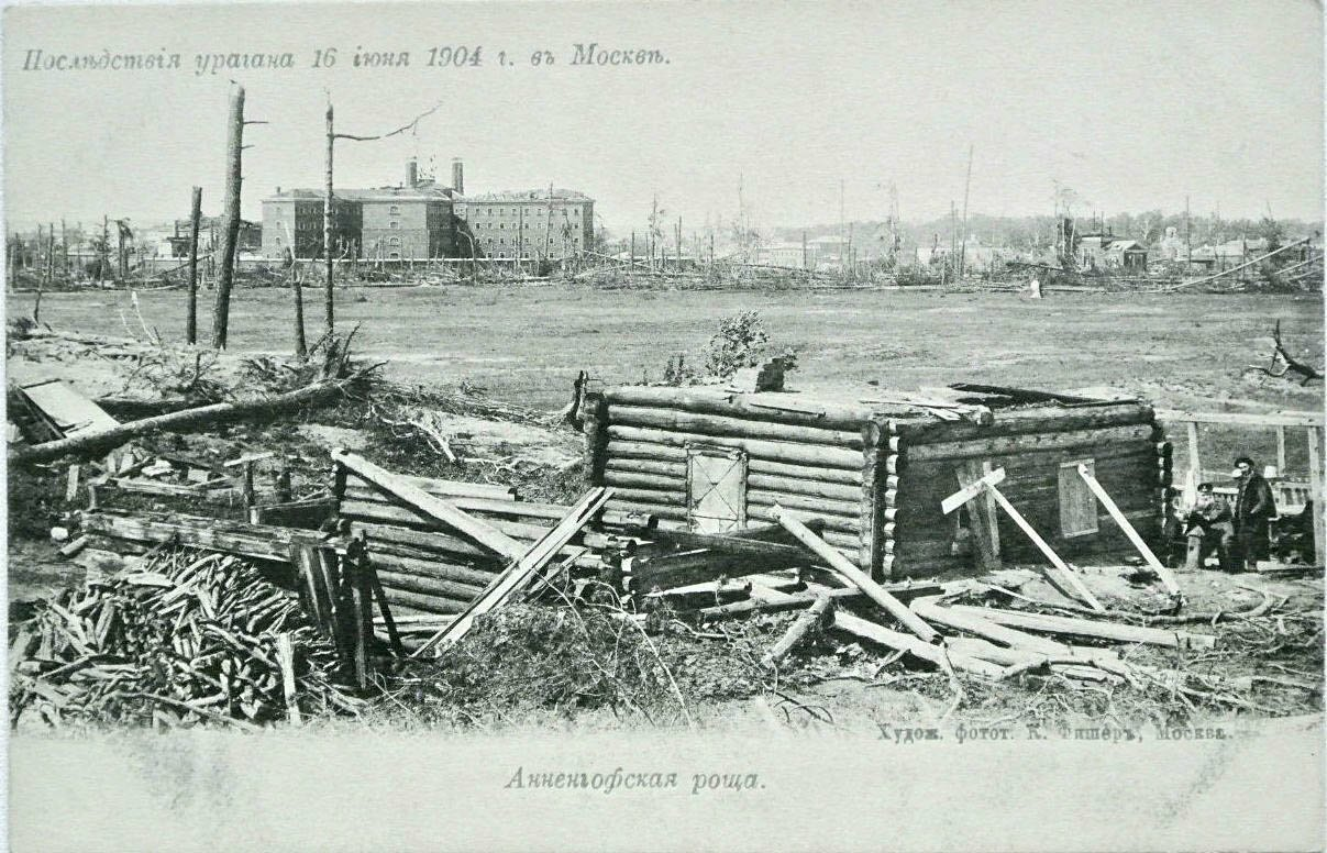 Последствия урагана 16 июня 1904 г. Анненгофская роща