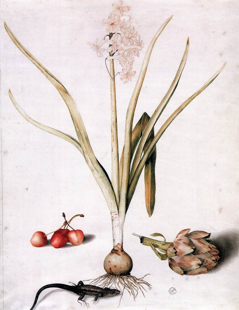 51986-hyacinth-with-four-cherries-a-lizard-and-an-artichoke-garzoni-giovanna.jpg
