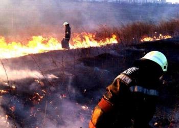 Минувшей ночью в Кишинёве сгорело 15 га растительного покрова