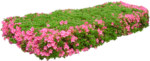 Flora ClipArt 134.png