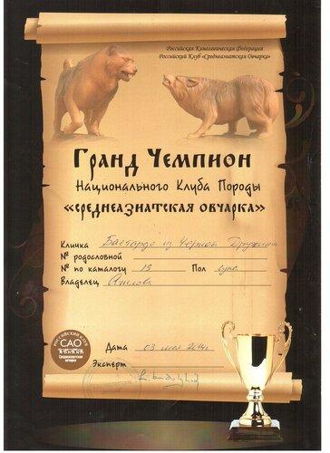 http://img-fotki.yandex.ru/get/9796/1773011.33/0_a6f3a_51f3f418_L.jpg