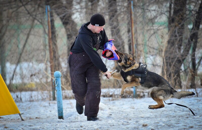 http://img-fotki.yandex.ru/get/9796/22682307.fc/0_b68c2_84e1007f_XL.jpg