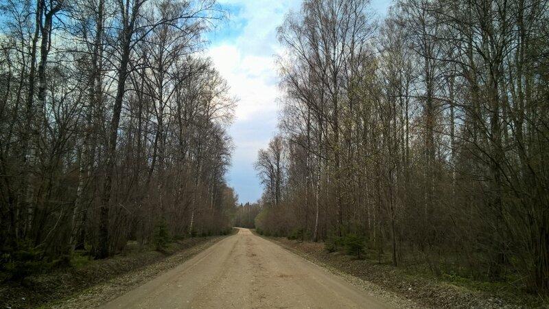 Грунтовка в лесу