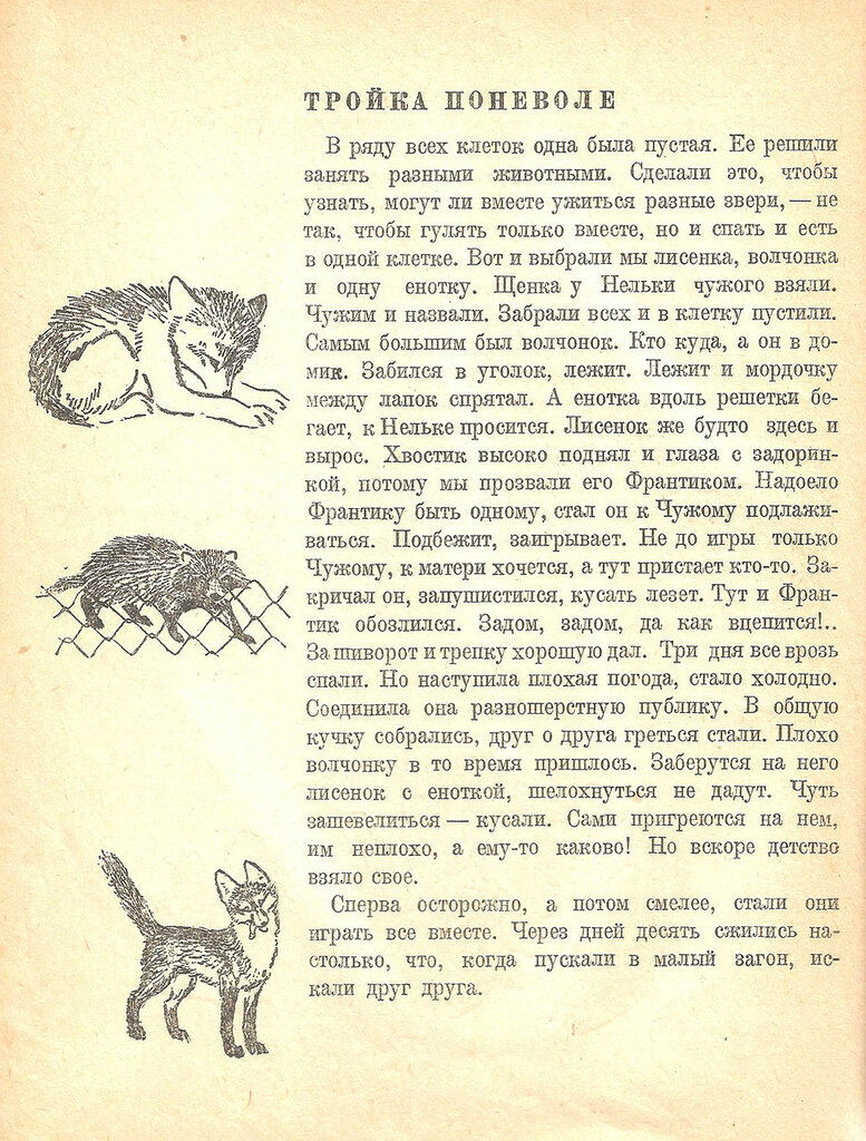 13 (с.38).jpg