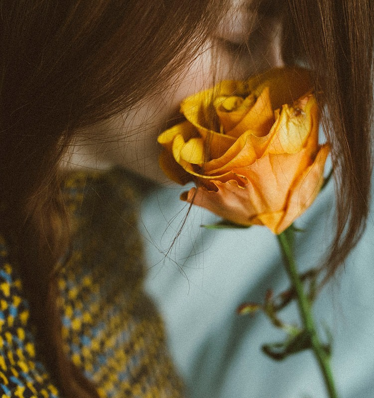 Желтая роза / фото Fabrizia Milia