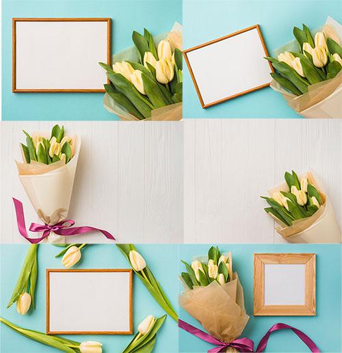 Весенние фоны с  тюльпанами / Spring backgrounds with tulips