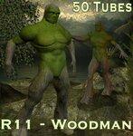 3D Woodman(Вудман)- Деревянный человек