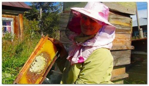 труженицы пчелы - слабость Нины