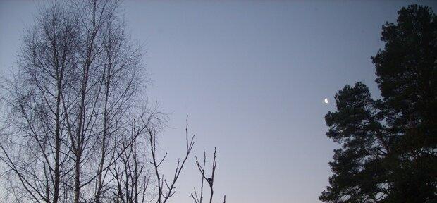 25.12.2013 09:24