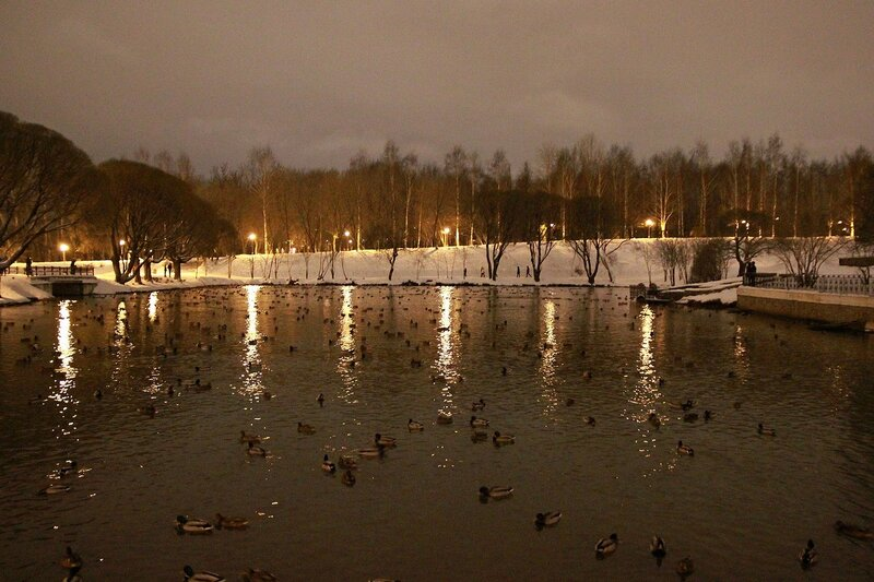 Отражающиеся в волнах верхнего пруда фонари парковой аллеи у цирка