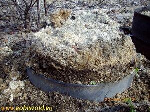 компостирование опилок