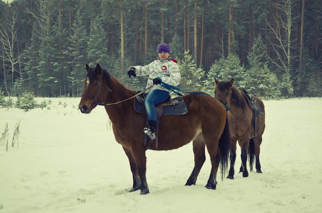 Прогулки на конях. Фотосессия с лошадьми. Снято на любительскую зеркальную камеру Nikon D5100 с профессиональным светосильным объективом Nikon 17-55mm f/2.8G.
