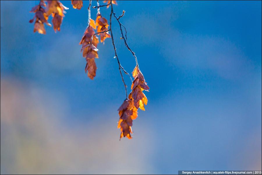 Осенние краски крымского предгорья