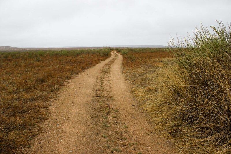 дорога по степи на плато Ордос, Внутренняя Монголия