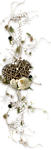 Клипарт в PNG. Красивый материал для рамочек ФШ