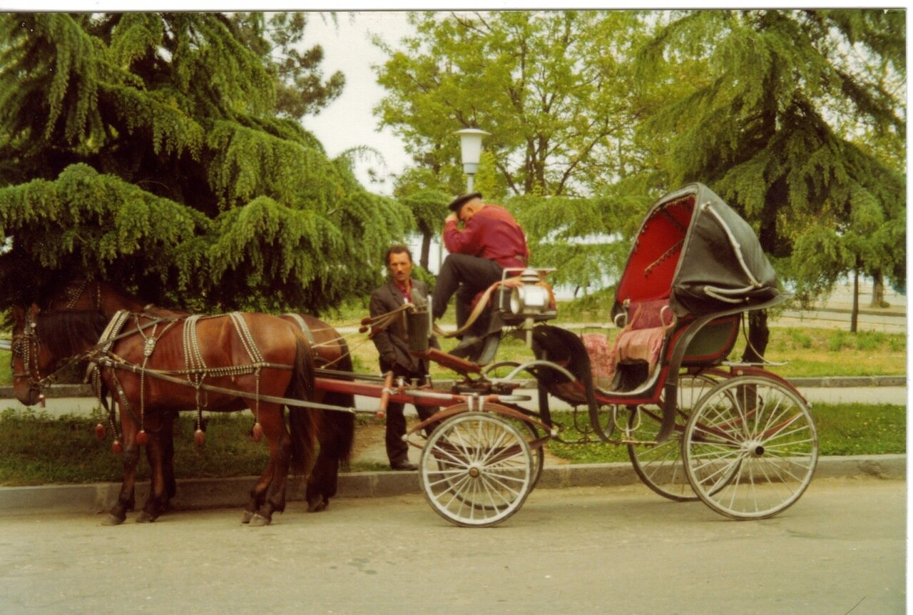 Повозка в Батуми
