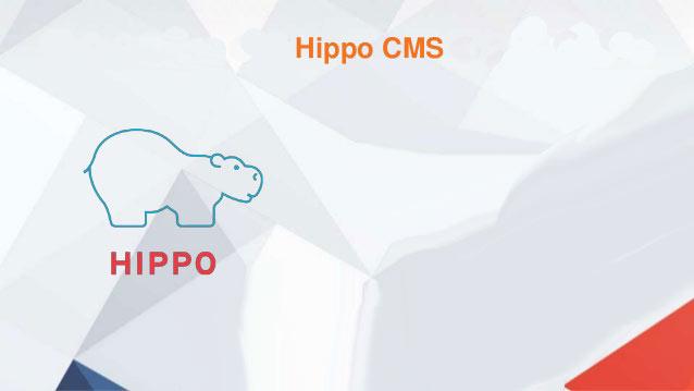 Why Hippo CMS?