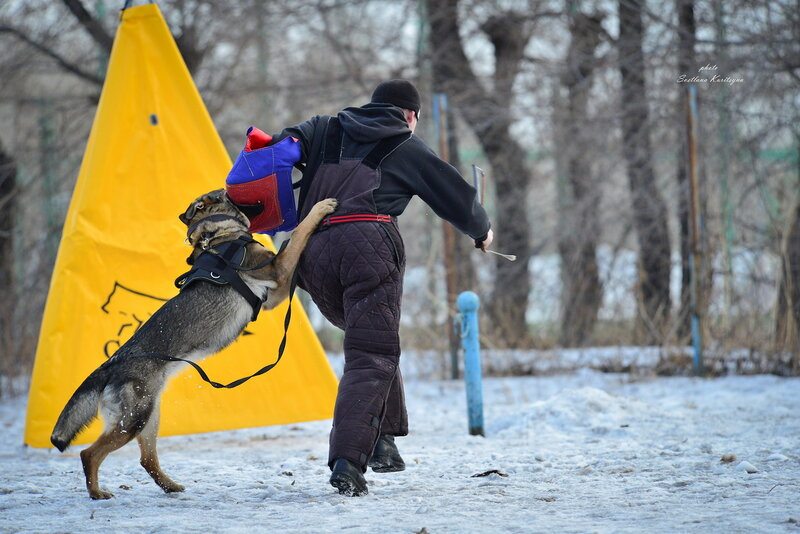 http://img-fotki.yandex.ru/get/9798/22682307.fc/0_b68bc_5b0631e9_XL.jpg