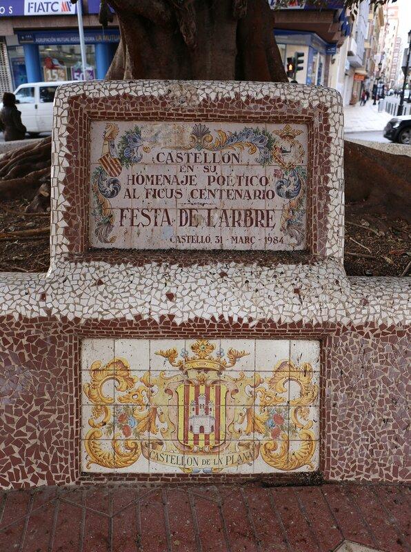 Castellon de La Plana. The Area Of Maria Agustina. Plaza María Agustina, ficus Centenario, Ficus centenario