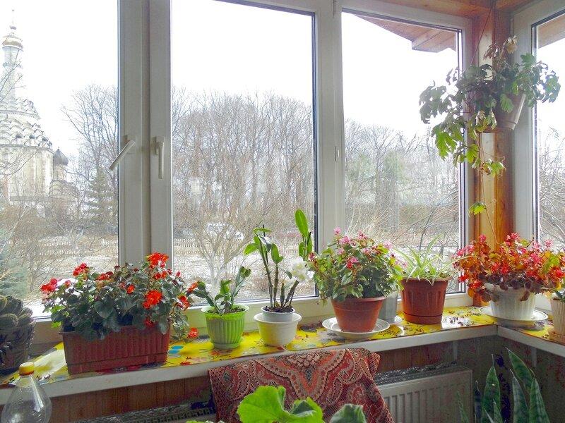 А за окном опять снежок