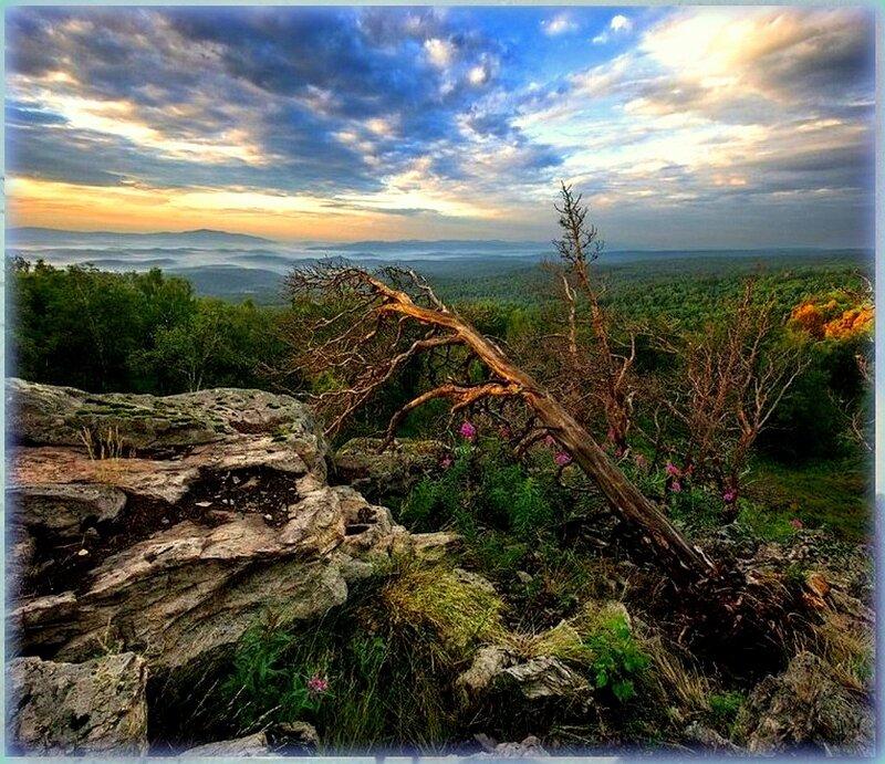 Природа, пейзаж, фото из интернета (208).jpg