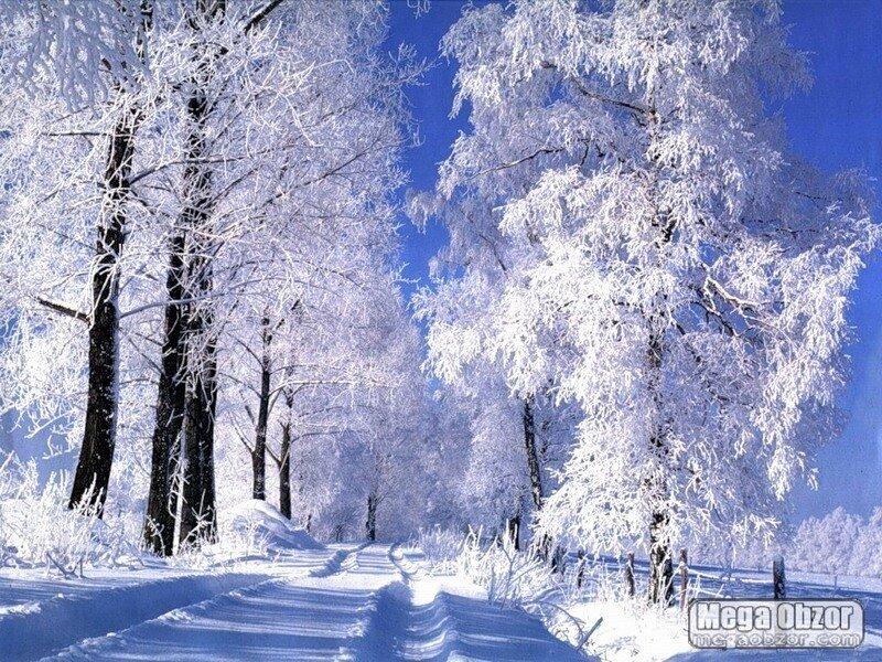 http://img-fotki.yandex.ru/get/9798/97761520.12e/0_81cd3_622a195e_XL.jpg