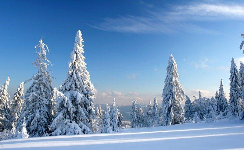 http://img-fotki.yandex.ru/get/9798/97761520.12f/0_81d04_2f422376_XL.jpg