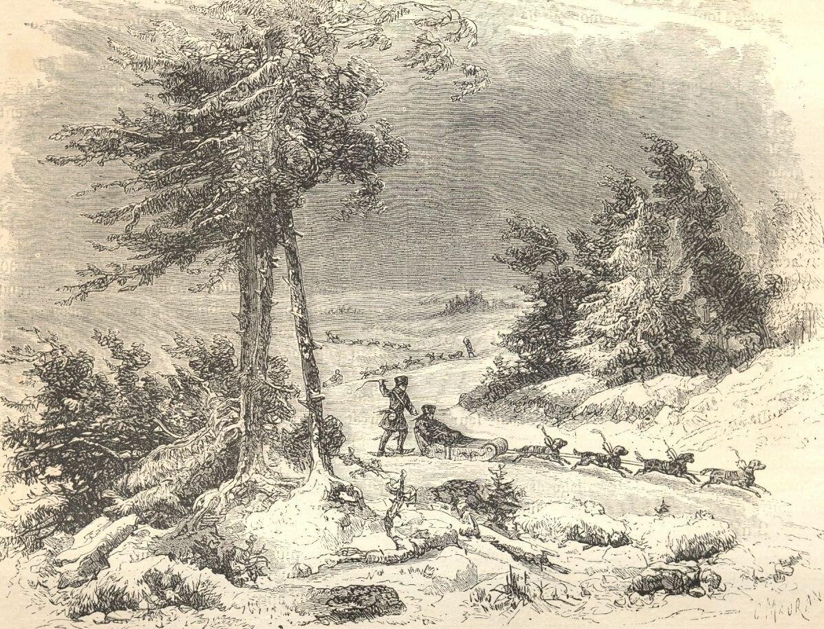 1860. Езда на собак