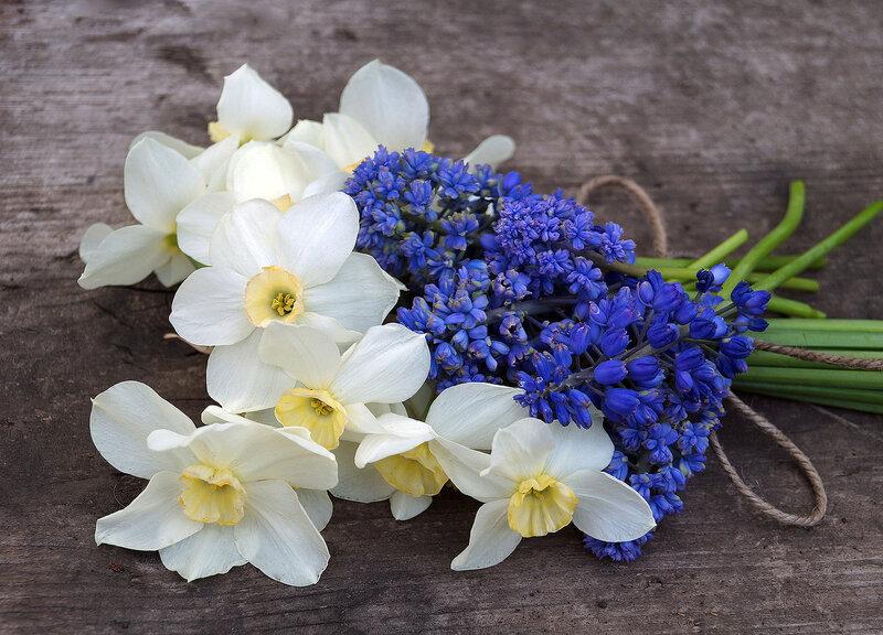 Картинки букет весенних цветов