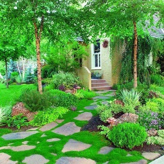 Садовые дворики. Ландшафтный дизайн  - фото 22