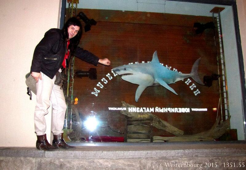 1351.55 С акулой